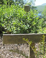Ruskins Favourite Garden