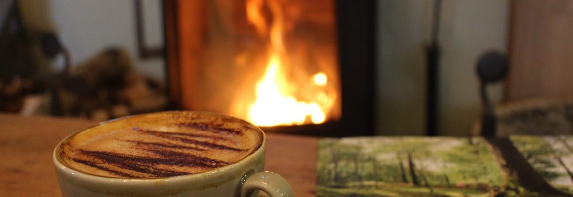 Coffee infront of fire with garden book